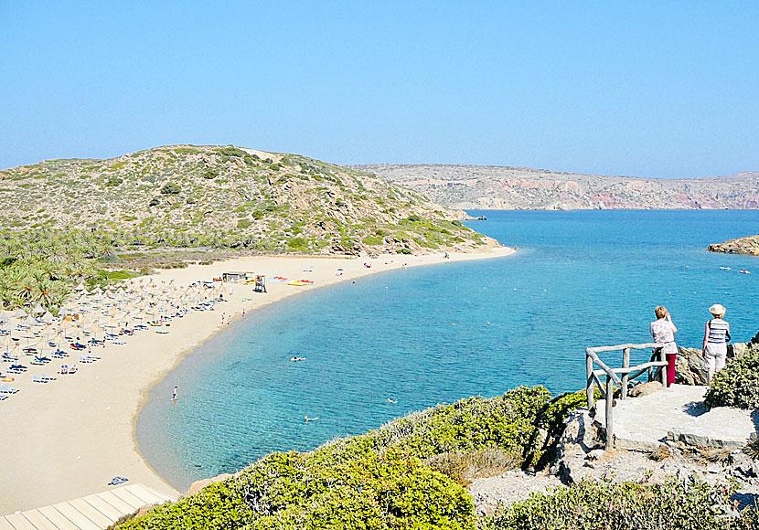 Palmstranden Vai Pa Ostra Kreta